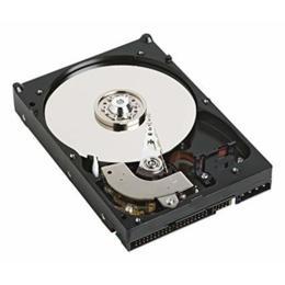 Refurbished A-Merk 40GB IDE harde schijf
